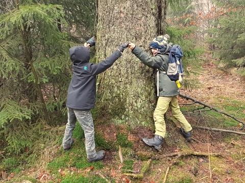 Rauszeit – Waldbaden und Naturerleben für Familien-3