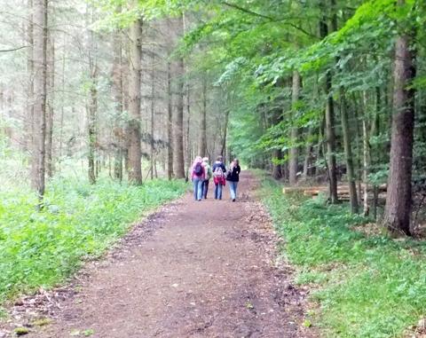 Natur-Coaching Kennenlernspaziergang 18-3